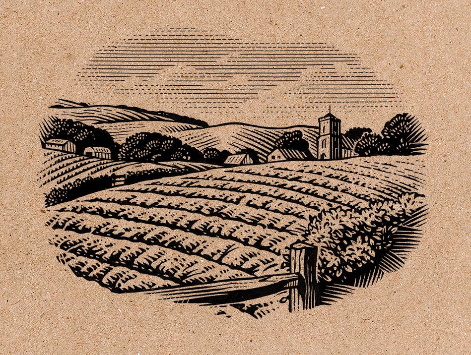 Henley Cold Landscape Illustration